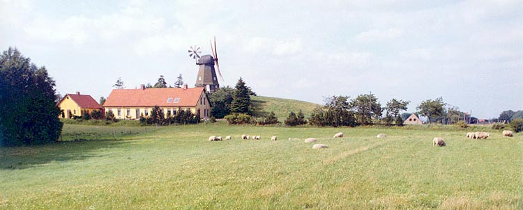 Windmills and yellow brick houses, North Zealand, Denmark